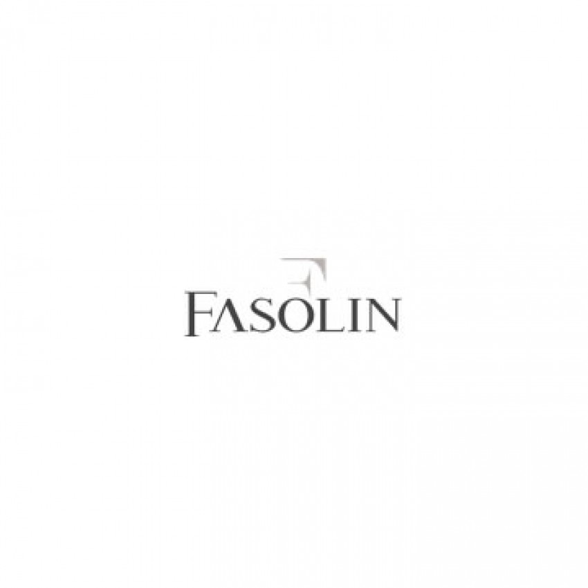 www.fasolin.it
